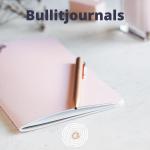 Annelou van Noort creatief bullit journals